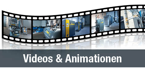 Videos und Animationen